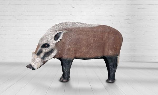 Asen Buschschwein groß