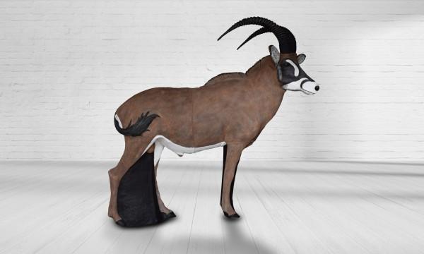 Asen Roan Antilope