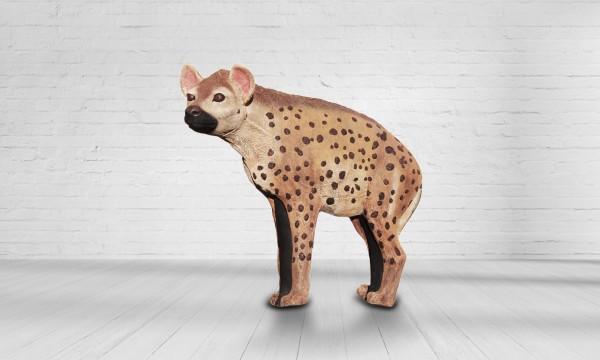 Asen Hyäne groß