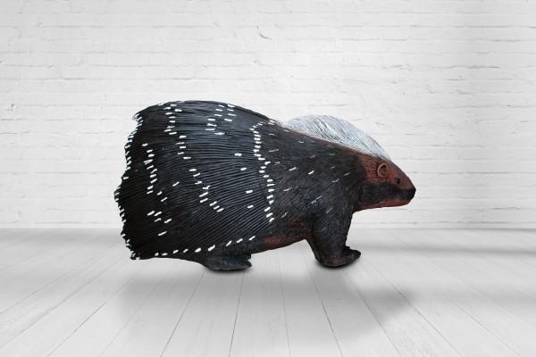 Asen Stachelschwein