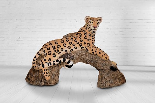 Asen Leopard am Baumstamm