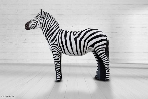 Asen Zebra
